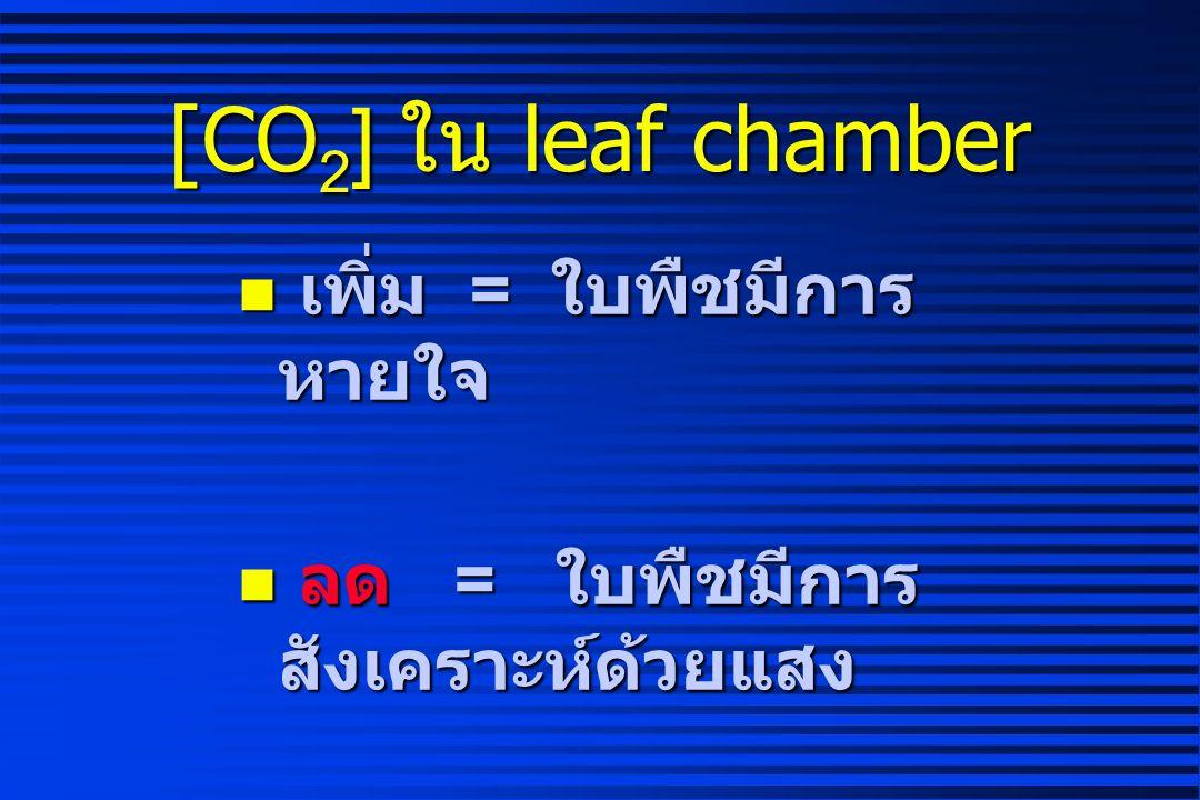 [CO2] ใน leaf chamber เพิ่ม = ใบพืชมีการหายใจ